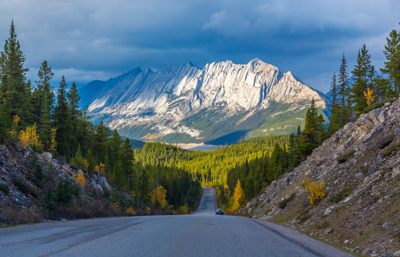 Natur- und Tierwelt im Westen Kanadas