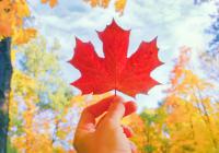 Kanada Mietwagenreise - Ostkanada Family kompakt